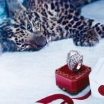 Winter Tale Haute Joaillerie Cartier