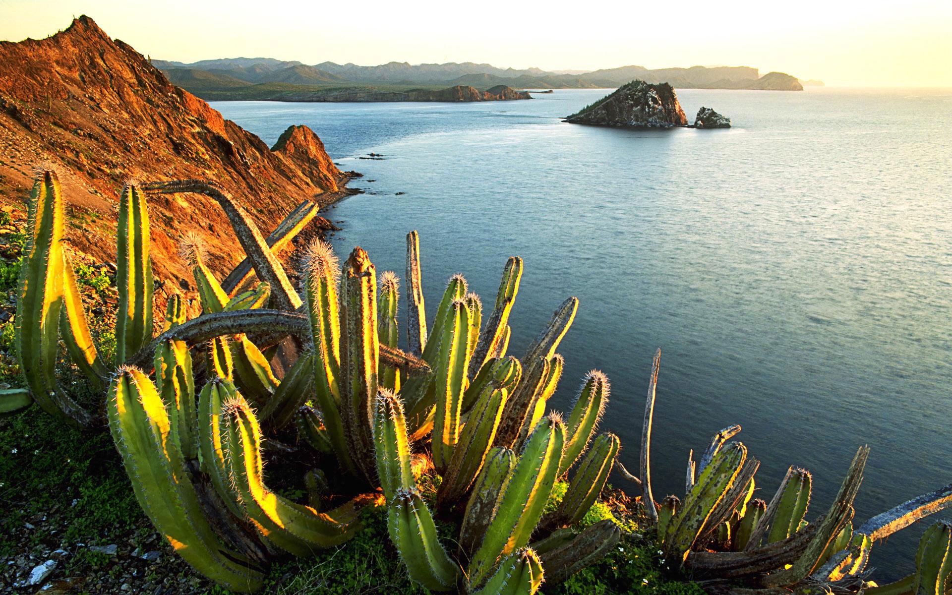 Voyage privé au Mexique