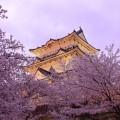 Pagodas_Japan_Spring_473018