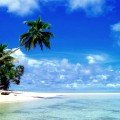 37129156-tropical-paradise