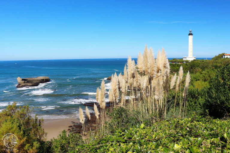 Où trouver un peu de fraîcheur cet été en France ?
