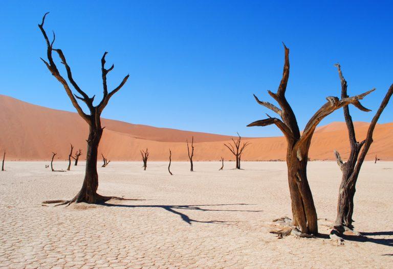 Les plus beaux déserts du monde